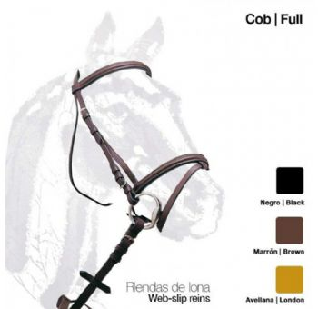 Leather single bridle with raised browband